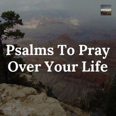 Psalms to pray over your life.