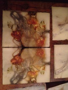 Experiments with Eco printing using steam and boiling water - Bee Shay and Leslie Marsh fall 2012