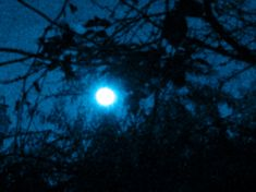 ONCE IN A BLUE MOON  Today, the last day of January, the sky is lit up by a rare astrological phenomenon: a Full Moon Total Lunar Eclipse that is also Blue (the second full moon of the month) and a Supermoon (perigee Moon). Check out more about this event on my new article on my blog.