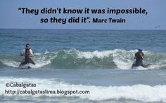 Peruvian Paso Horses champions of surfing