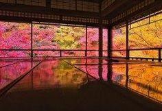 1年のうちで2ヶ月間しか味わえない絶景紅葉スポットが京都にあります そのスポットが京都光明寺にある瑠璃光院るりこういん 秋になれば赤や黄色オレンジの紅葉がなんとも幻想的な光景です 2016年秋の瑠璃光院開館期間は10月1日土12月4日日まで さあカメラを持って瑠璃光院へ行こう tags[京都府]
