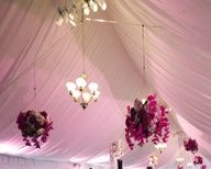 beautiful for wedding and/or party!