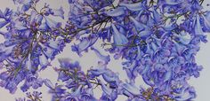 Jacaranda Painting - A Major Work in Watercolour - Heidi Willis Day And Time, No Time For Me, Textures And Tones, Heart And Mind, Big Picture, Tangled, Tulips, Watercolour, Things To Come