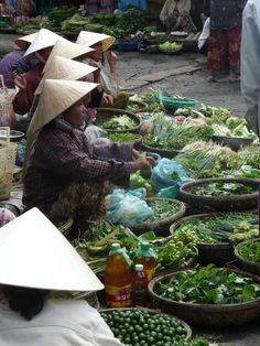 Vietnam / Hotels Web Online