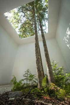 Courtesy of Nature by Johan Selbing and Anouk Vogel at 2013 International Garden Festival: