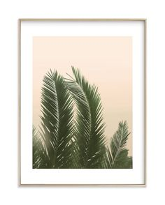 """""""Tropical Palm Tree"""" - Art Print by Wilder California in beautiful frame options and a variety of sizes."""
