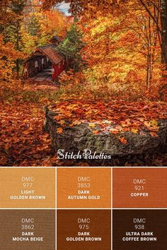DMC Embroidery Thread Palette: Auburn Autumn - - Daily color palette inspiration for embroidery lovers and pattern designers. Embroidery thread matching ideas for cross stitch and needlework projects. Orange Color Palettes, Color Schemes Colour Palettes, Fall Color Palette, Colour Pallette, Color Combos, Rustic Color Palettes, Pantone, Dark Autumn, Paint Colors For Home