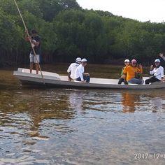 Nusa lembongan juga memiliki kawasan hutan mangrove. Mangrove point yang terus dikembangkan agar kelestarian hutan mangrove bisa terus dipertahankan. Hutan mangrove Nusa lembongan kini menjadi salah satu destinasi yang wajib dikunjungi wisatawan. Tour Hutan mangrove Nusa lembongan dengan harga murah dan bersahabat