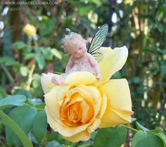 """Dewdrop Fairy. OOAK by Daniel Messini in 1/2"""" scale & is 1-1/4"""" high, polymer clay, acetate wings, viscose hair, eyelashes applied 1 by 1. $190.00"""