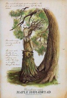 Maple Hamadryad (Hamadryas aceris)    (From Arthur Spiderwick's Field Guide), by Tony DiTerlizzi