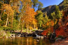 I love hiking along the creek in Oak Creek Cayon, AZ
