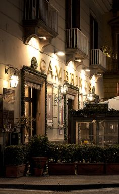 Gran Caffè Gambrinus - Napoli    Never liked cannoli, until I tried it here, and the decor is exquisite!