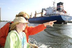 Free Boat Tours Port of Melbourne - Melbourne