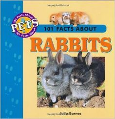 March 2014.  THEME:  Silly Rabbits.  101 Facts About Rabbits by Julia Barnes has great information about rabbits that is easy for sharing aloud.  Check here to see if it's in: http://opac.smfpl.org/cgi-bin/koha/opac-detail.pl?biblionumber=88124&query_desc=kw,wrdl:%20101%20facts%20about%20rabbits