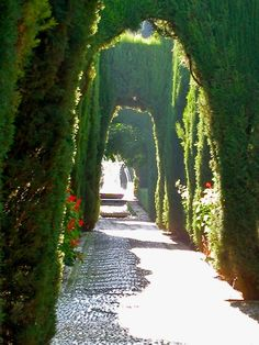The gardens of the Alhambra in Granada, Spain.