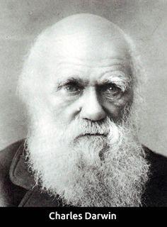 Teoría Darwin-Wallace | Portal Académico del CCH