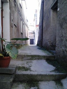 A back street in Conflenti, Calabria Italy.