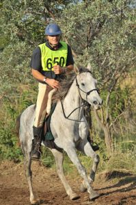 7 Characteristics of a great endurance horse