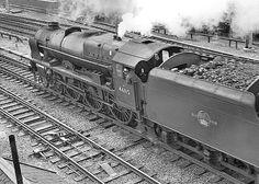 Royal Scot. No.46115 'Scots Guardsman'. South-bound. Lichfield (Trent Valley) June 1962
