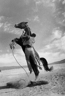 Horse on High w Cowpoke - love this picture - I'd say that he was in a quandary.