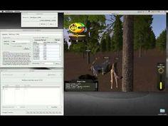 WolfQuest Hacks: Online Multiplayer (Speed + Health + Nametag) - http://www.7tv.net/wolfquest-hacks-online-multiplayer-speed-health-nametag/