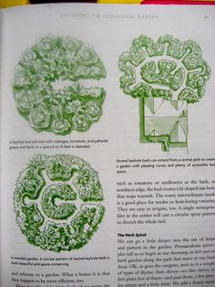 After I started reading Toby Hemenway's book, Gaia's Garden, I decided I had to have a mandala garden. A mandala garden is a form of keyhole garden, which you may be more familiar with. For those of you completely new Micro Garden, Veg Garden, Edible Garden, Garden Beds, Garden Care, Vegetable Gardening, Organic Gardening, Farm Gardens, Outdoor Gardens