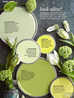 BHG's favorite green paint colors.  Guilford Green is the 2015 Benjamin Moore Color of the Year. BHG