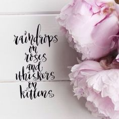 raindrops on rose and whiskers on kittens - these are my favorite things http://ellenwaldren.com/