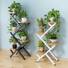 Balcony decoration flower shelf multi storey indoor special living room home cymbidium bonsai frame space space rack - AliExpress Hanging Orchid, Balcony Flowers, Balcony Planters, Wall Planters, Indoor Flowers, Concrete Planters, Balcony Garden, Planter Boxes, Iron Balcony