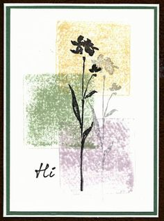 handmade card ... color blocked background ... silhouette flower stamped and stamped off for shadow ... like it!!