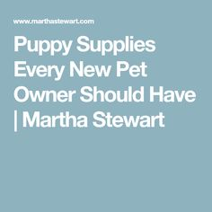 Puppy Supplies Every New Pet Owner Should Have | Martha Stewart