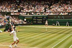 La Credenza Ltd Wimbledon : 40 best tennis wimbledon images on pinterest sports and