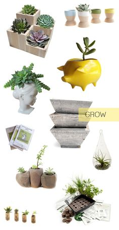 Inspiring picks to get your garden growing. Perfect for my new little garden!
