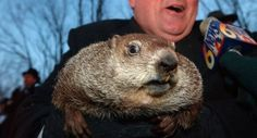 12 Times Even Punxsutawney Phil Couldn't Handle Groundhog Day