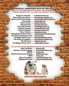 FINANCIAL ASSISTANCE WITH VET BILLS. Here is a list of organizations that provide financial assistance. Visit their website to see if you qualify and meet their criteria.