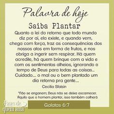 #bomdia #quintafeirasualinda #diadesol ☀️