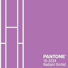 Pantone's Color of the Year Radiant Orchid