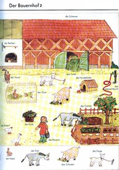 German For Beginners: The farm 2