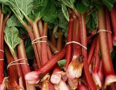 Rhubarb bundles - one of the earliest season offerings.