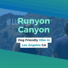 5 Dog Friendly Hikes in Los Angeles California. Hiking's are a fantastic means to hang out with your pooch. These are little suggestion before dog hike. Pet Travel Carrier, Dog Travel, Places In California, California Travel, Hiking Routes, Hiking Trails, Hikes In Los Angeles, Fitness Classes, Hiking Dogs