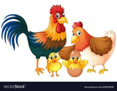 Isolated chicken family on white background Vector Image Cartoon Chicken, Chicken Humor, Chicken Painting, Baby Painting, Chicken Vector, Cartoon Caracters, Inkscape Tutorials, Pumpkin Vector, Baby Chickens