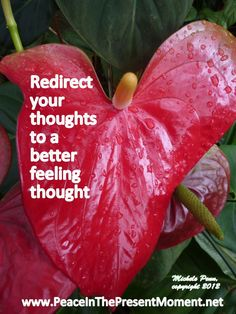 Redirect your thoughts to a better feeling thought. ~ Michele Penn http://peaceinthepresentmoment.net/