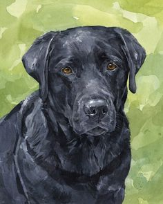 An Original 8x10 watercolor painting of your pet.  Dogs, cats, bunnies and other pet portraits.    Realistically drawn with lots of great detail, texture, and personality. Painted from your photo on heavy weight, archival watercolor paper. Can work from less than perfect photos!    Typically takes 1-3 weeks to completion - however Im happy to complete rush orders. Just contact me if you have a deadline.    Feel free to contact me with any questions, rush order requests, or to show me photos…