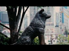 Hachiko Tribute 2010