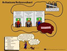 Antiseizure Anticonvulsant | Nursing Mnemonics and Tips