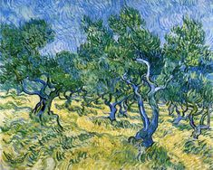 Olive Grove by Vincent van Gogh #art