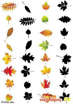 Az árnyékos - Őszi levelek