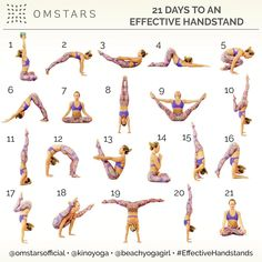 """2,328 Likes, 45 Comments - Kino MacGregor (@kinoyoga) on Instagram: """"Announcing the FIRST ever @omstarsofficial Yoga Challenge! Hosts: @beachyogagirl & @kinoyoga…"""""""