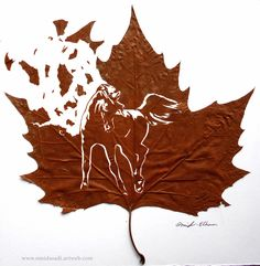 Freedom .......  Handmade leaf cut by: Omid Asadi