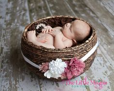 Belly sash on basket used at maternity shoot. Must do!
